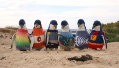 Amazing Animals - Knitted sweaters for Penguins