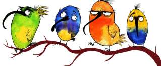 Birds in Speech - building your vocabulary with idioms