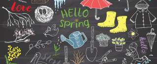 Springtime phrases with 'spring' and vocabulary test