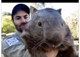 Társkereső online ausztrál