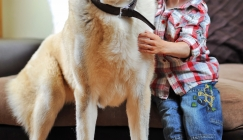 Amazing Animals - Three-legged pup helps boy with rare genetic condition