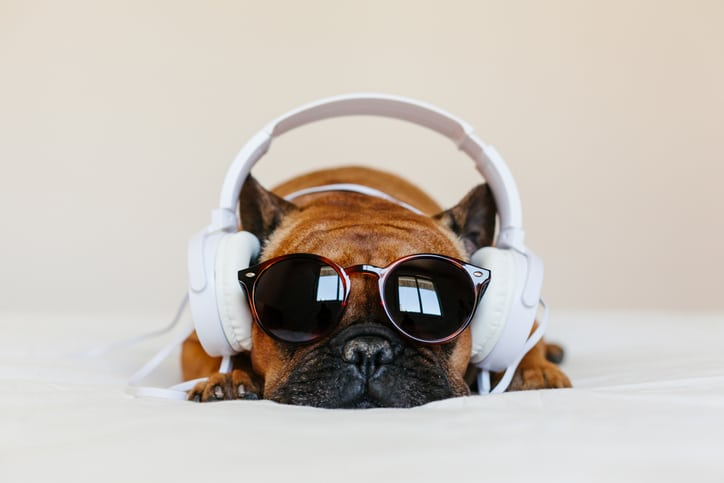 Hallás utáni értés